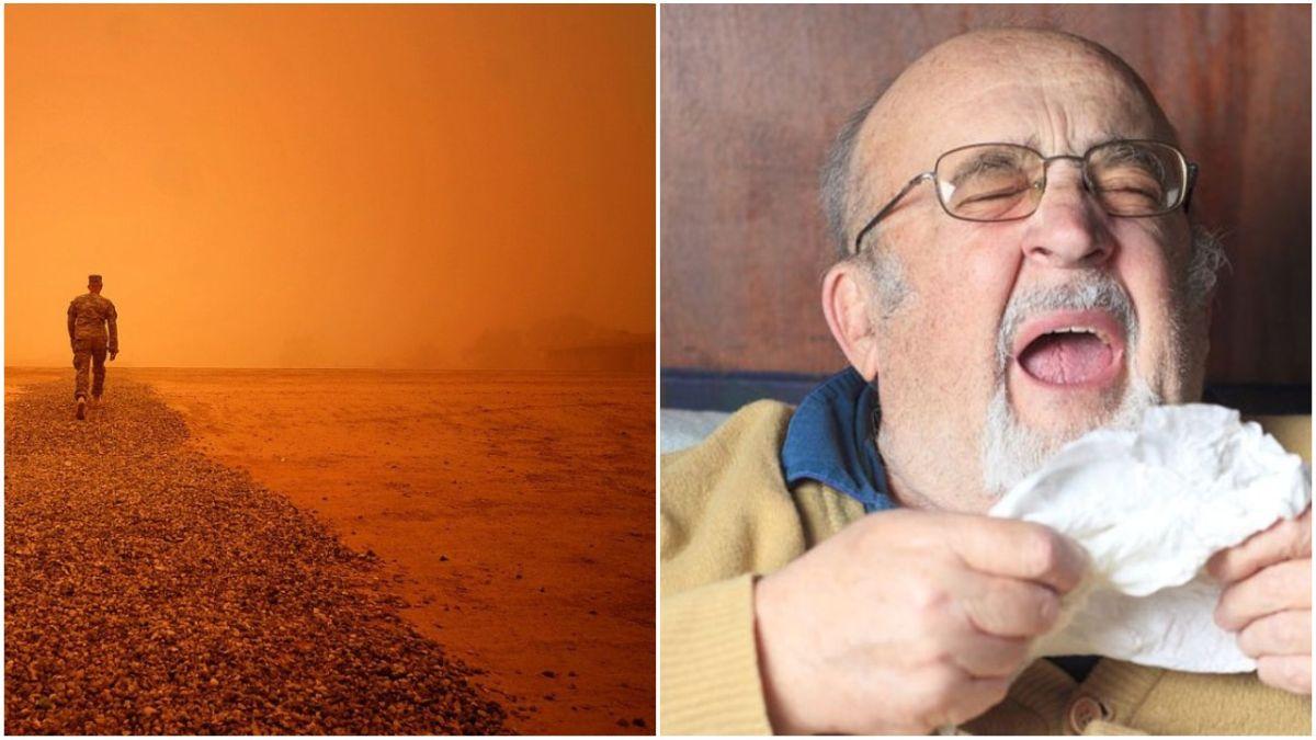 Allergikud rõõmustavad: Saharast Eestisse jõudnud liivatolm on hea vaheldus kohalikele tolmudele