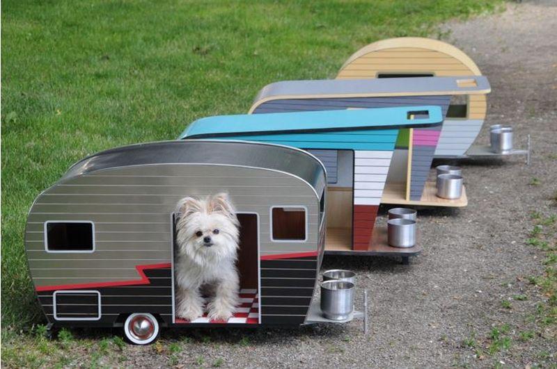 OTSEBLOGI JA FOTOD: Laagris jäi karavan koerte haukumise tõttu seisma